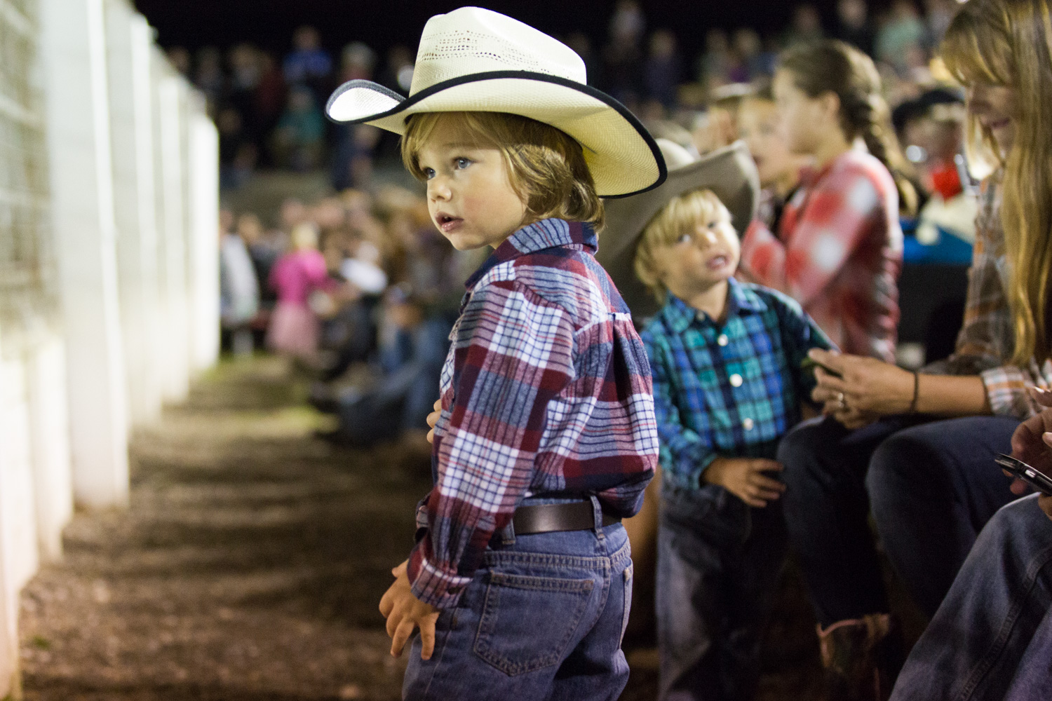 fans at the rodeo
