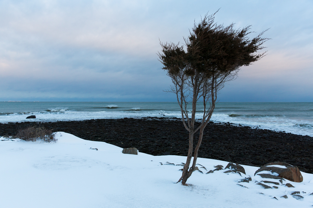 northeast winter coast